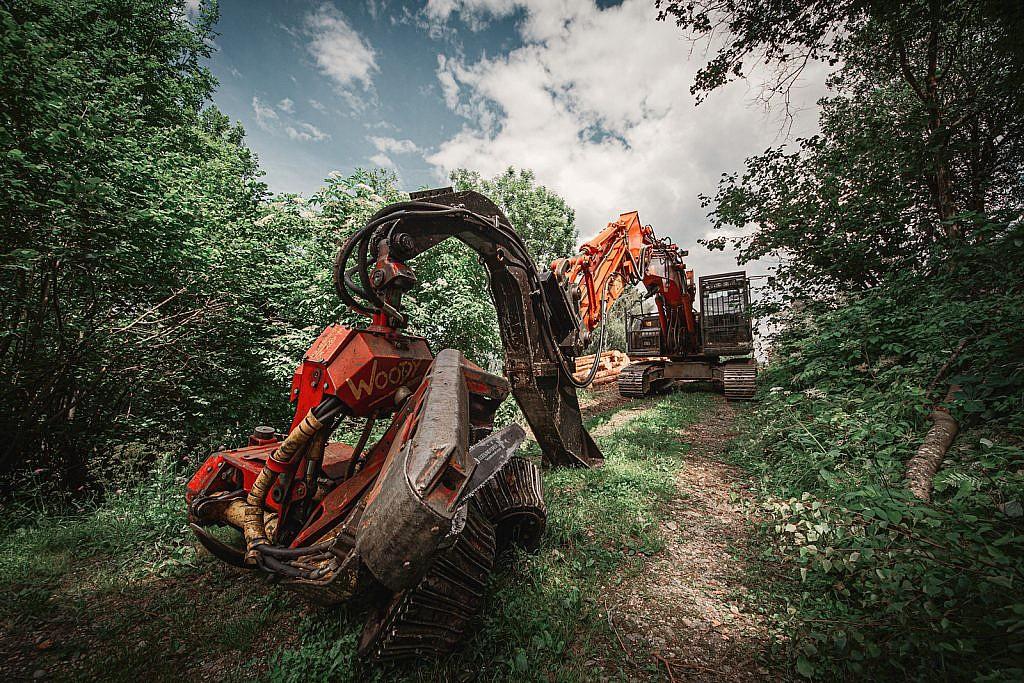 Bagger im Wald